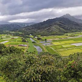 Sheldon Kralstein - Kauai Panorama
