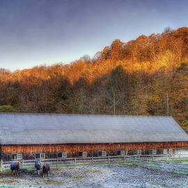 Joann Vitali - Kedron Valley Farm - Woodstock VT