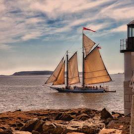 Karol  Livote - Keeping Vessels Safe