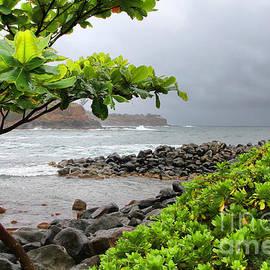 Diana Sainz - Keokea Bay Big Island Hawaii By Diana Sainz