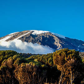 Jim DeLillo - Kilimanjaro