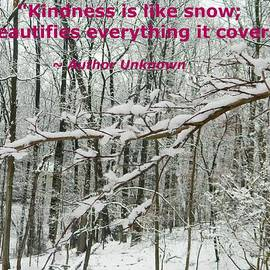 Emmy Marie Vickers - Kindness Is Like Snow