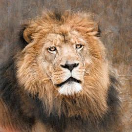 Laura Greene - Kingly Portrait