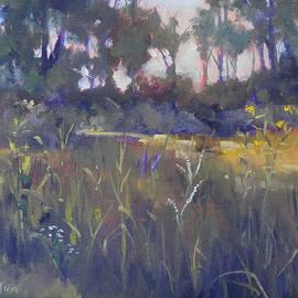 Judy Fischer Walton - Kingwood Prairie