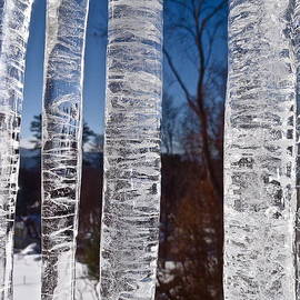 Rob Michels - Kitchen Window Icicles