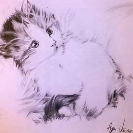 Agnes V - Kitten