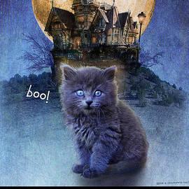 R christopher Vest - Kitten Happy Halloween