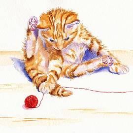 Debra Hall - Kitten Interrupted