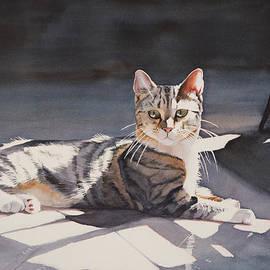 Christopher Reid - Kitty