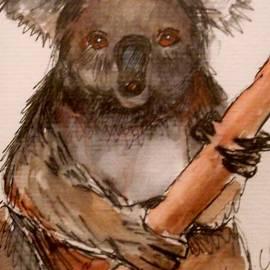 Anne Gardner - Koala
