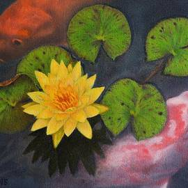 Alex Vishnevsky - Koi Fish and the Water Lily
