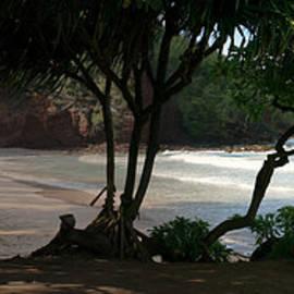 Sharon Mau - Koki Beach Hana Maui Hawaii