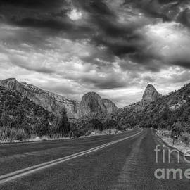 Eddie Yerkish - Kolob Canyon Black and White