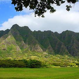 Kevin Smith - Kualoa Park Hawaii