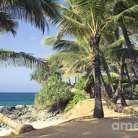 Sharon Mau - Kuau Cove Beach Paia Maui North Shore Hawaii
