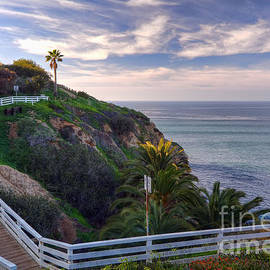Eddie Yerkish - La Jolla Walking Trail