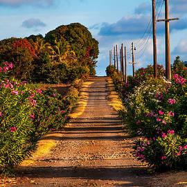 Jenny Rainbow - La Route du Soleil. The Road of Sun