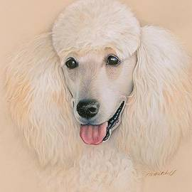 Heather Mitchell - Labradoodle Do