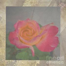 Beverly Guilliams - Lace Rosa Double Delight Duvet