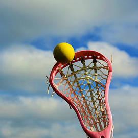Paul Ward - Lacrosse In the Pink