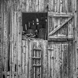 Nikolyn McDonald - Ladder to the Loft - Vertical - Black and White