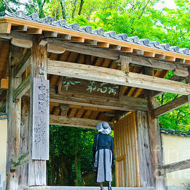 David Hill - Lady looking up at the impressive woodwork of a Japanese temple gate