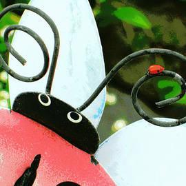 Heidi Manly - Ladybug On Metal Antenna