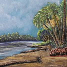 Richard Goohs - Lagoon at Hunting Island.