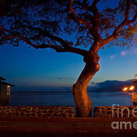 Baywest Imaging - Lahaina at night