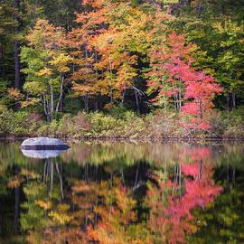 Karen Stephenson - Lake Chocorua Moment of Reflection