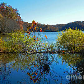 Emmy Marie Vickers - Lake Needwood Reflections