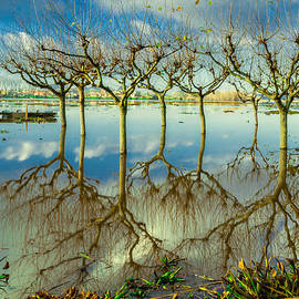 Alexandre Martins - Lake Pateira II