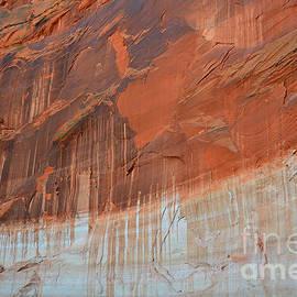 Debra Thompson - Lake Powell Navajo Tapestry