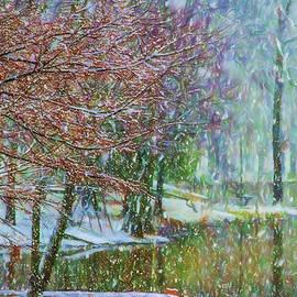 Barry Jones - Lake Snowfall - Snowy Winter Landscape