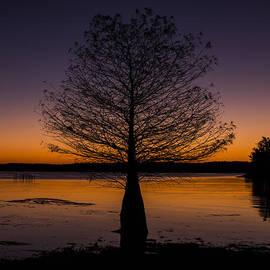 Amber Kresge - Lake Sunset