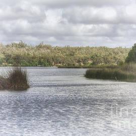 Elaine Teague - Lake Wagardu