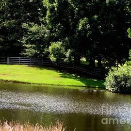 Gardening Perfection - Lakeside