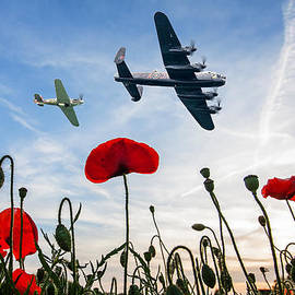 Robert Radford - Lancaster and Spitfire over poppies