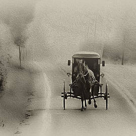 Bill Cannon - Lancaster County Buggy Ride