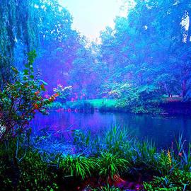 Maggie Vlazny - Blue Landscape