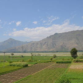 Imran Ahmed - Landscape of mountains sky and fields Swat Valley Pakistan
