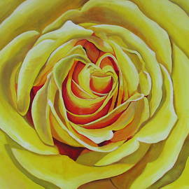 Lisa Wiertel - Large Rose Study