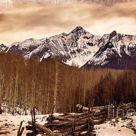 Janice Rae Pariza - Last Dollar Road Winter