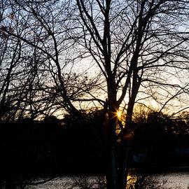 Michelle Wiarda - Last Golden Glow Long Pond Sunset