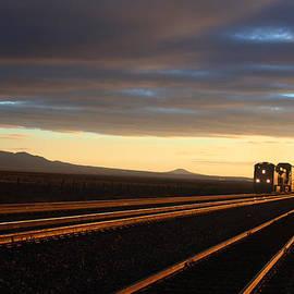 Valerie Loop - Last Light on the Train