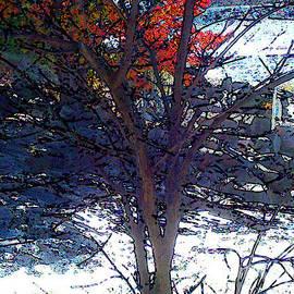 Iris Gelbart - Late Autumn