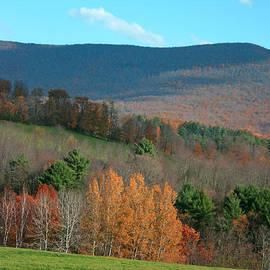 Marcel  J Goetz  Sr - Late Fall on the Mohawk Trail