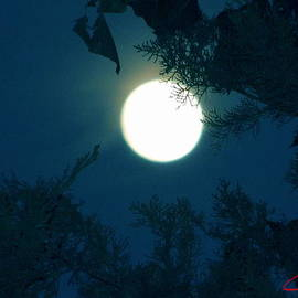 Colette V Hera  Guggenheim  - Late Full Moon in Spain
