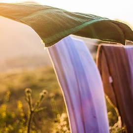 Aiden Kashi - Laundry