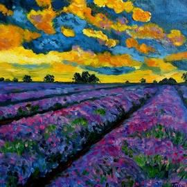 Julie Brugh Riffey - Lavender Fields At Dusk